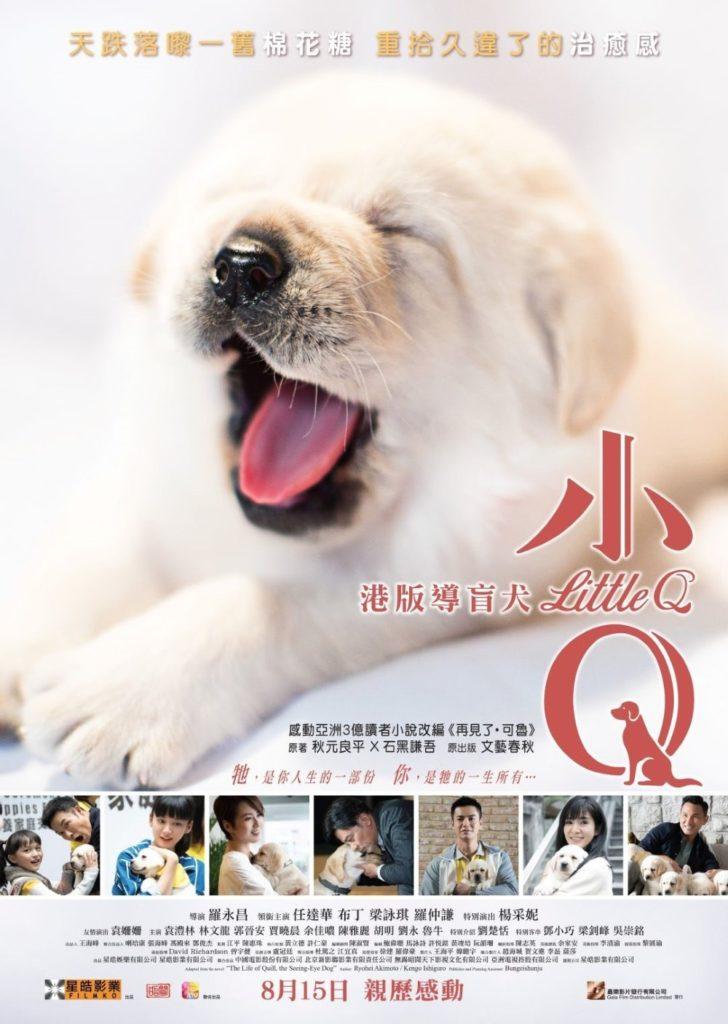 poster of audio descriptive movie Little Q
